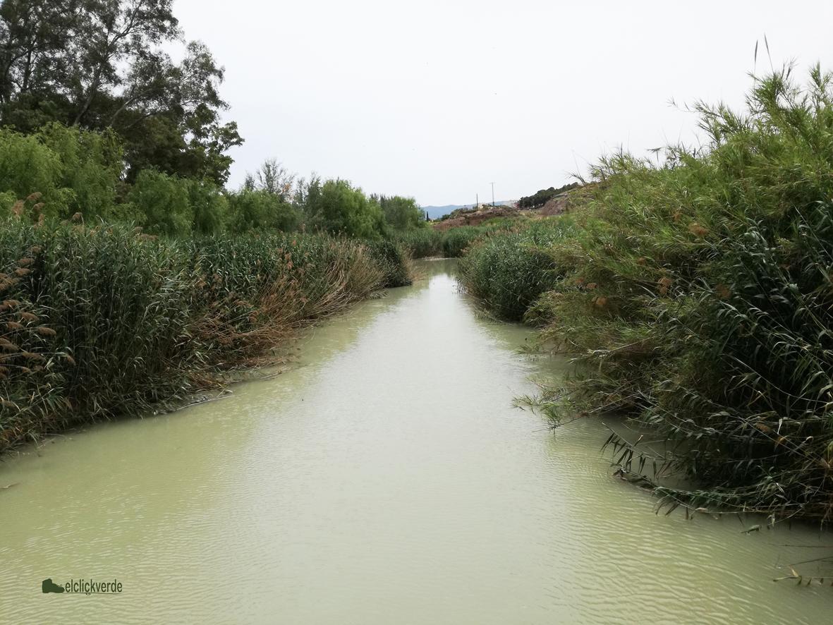 Imagen actual de una zona del entorno de la Contraparada