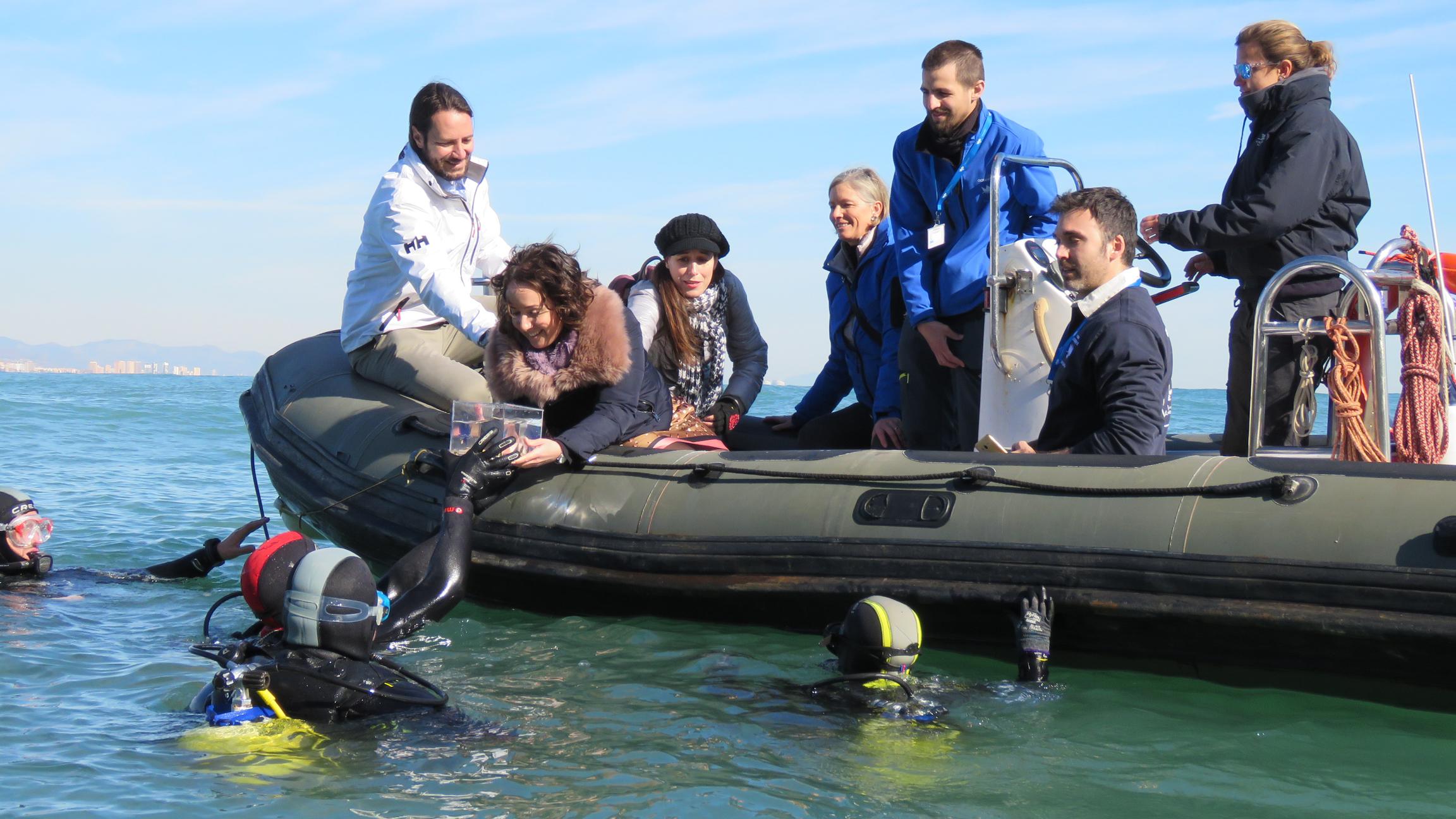 Entrega de pintarrojas por parte de Gloria Tello, concejala de Bienestar Animal, a los buzos. Imagen: Oceanográfic
