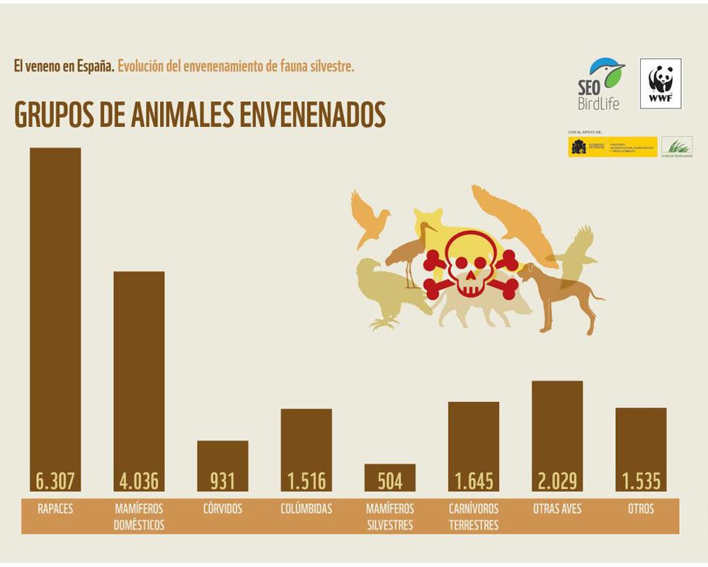 Grupos de fauna envenenados en España. Imagen: WWF