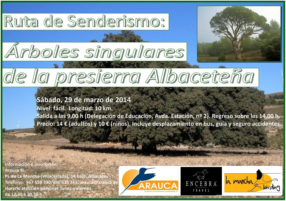 Arboles singulares Albacete, cartel