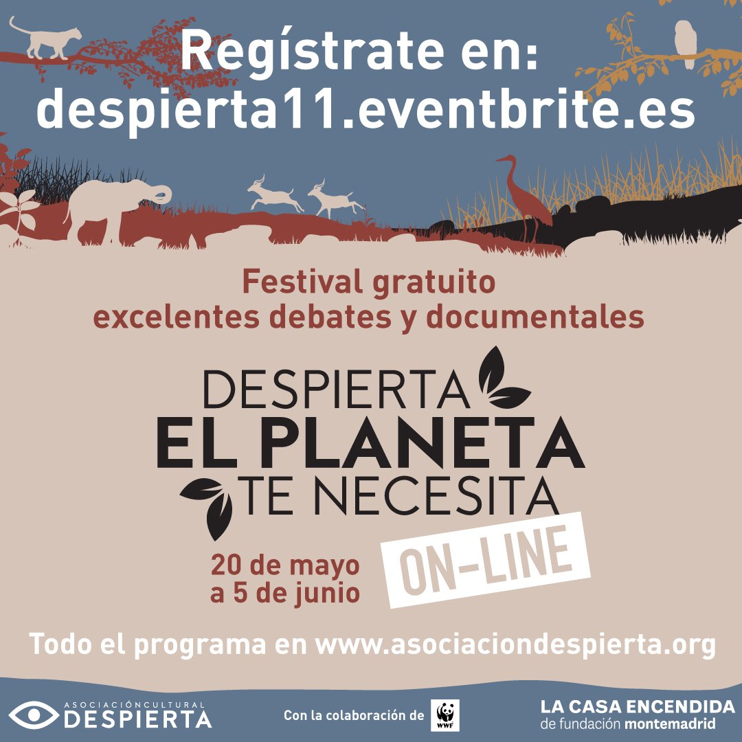 festival 'Despierta,el planeta te necesita'.
