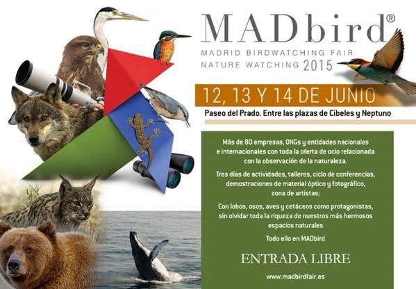 II MADbird en Madrid