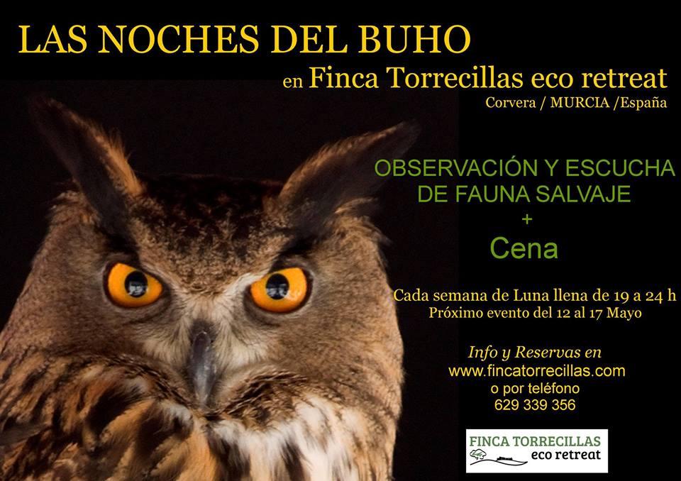 Fauna nocturna en Finca Torrecillas