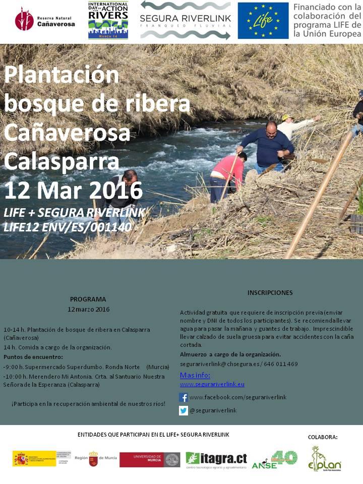 Plantación de bosque de ribera con el proyecto LIFE Riverlink.