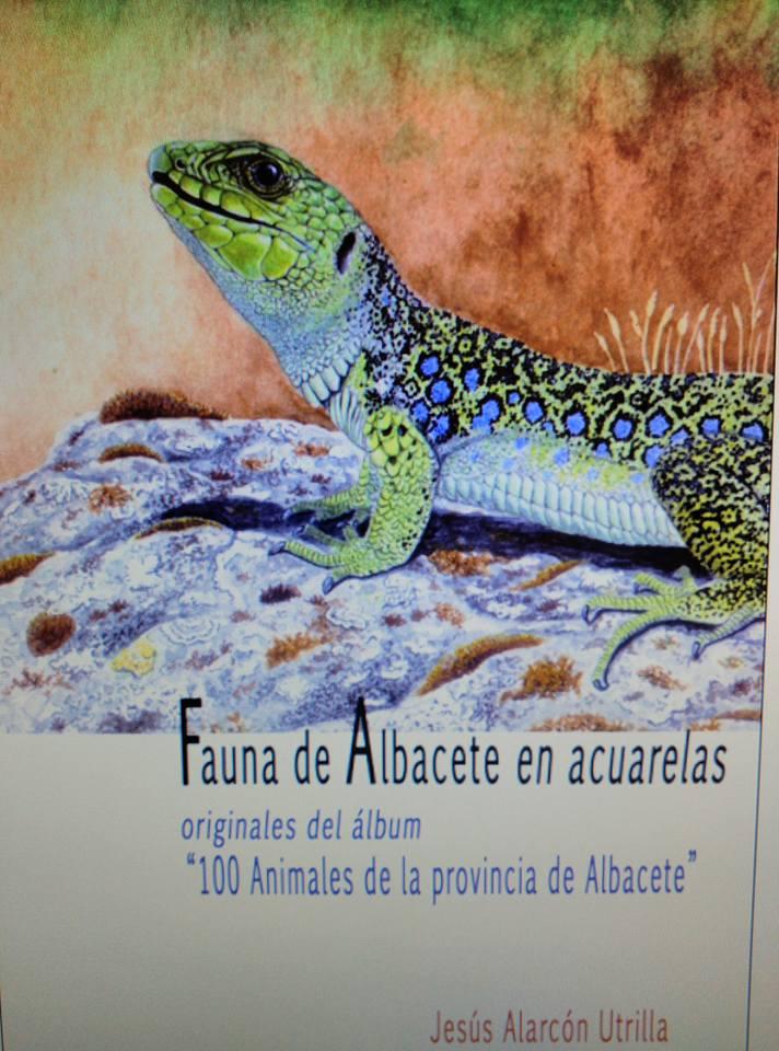 Exposición de Acuarelas de la fauna de Albacete.