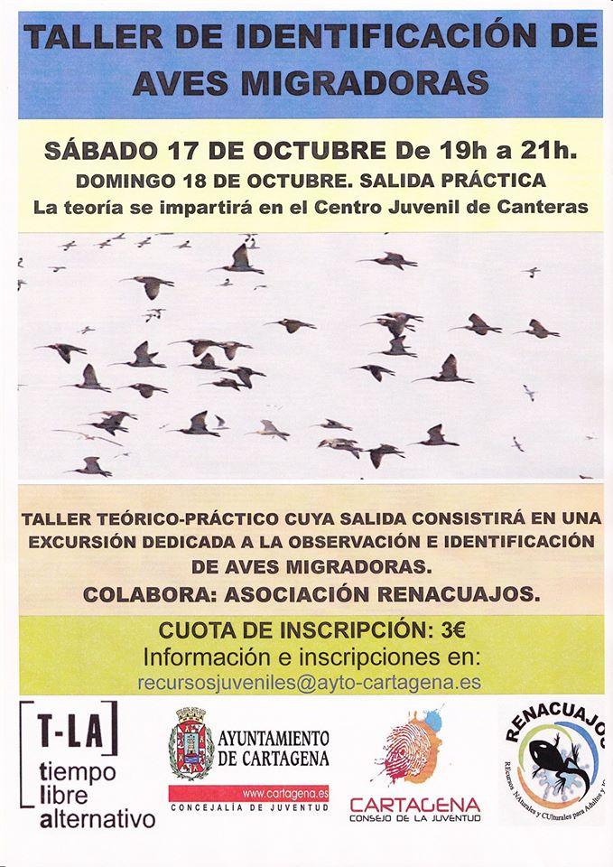 Taller de aves migradoras con el Ayto. de Cartagena