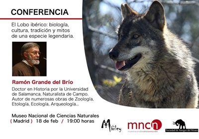 Conferencia sobre el lobo ibérico en el Museo Nacional de Ciencias Naturales de Madrid