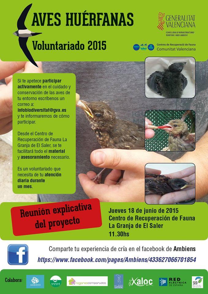 Voluntariado de aves huérfanas del Centro de Recuperación de Fauna de El Saler (Valencia)