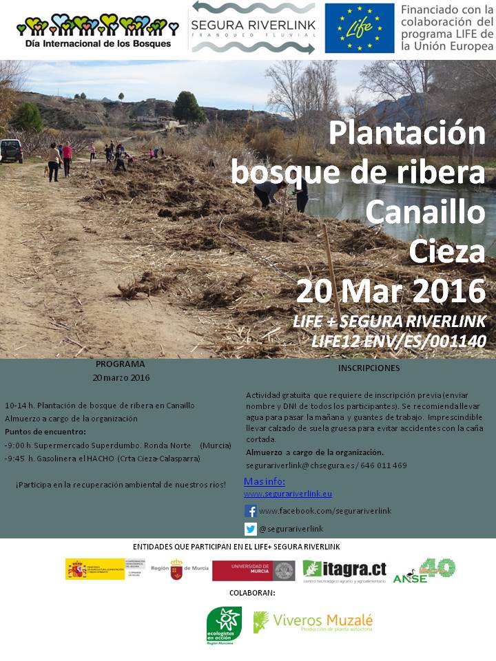 Plantación de Bosque de Ribera con el Life Segura Riverlink