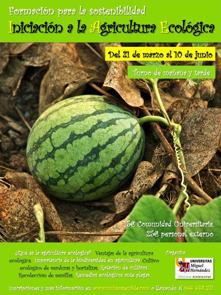 Iniciación a la Agricultura Ecológica con la UMH