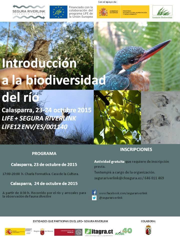 Introducción a la biodiversidad en el río con ANSE