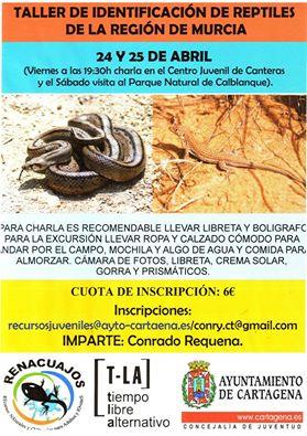 Taller de identificación de reptiles