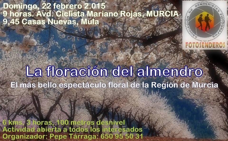 Floración de los almendros de Mula con Fotosenderos.