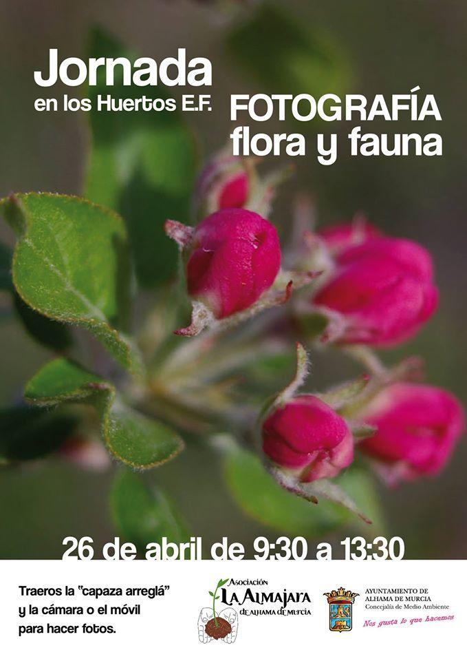 Fotografía de flora y fauna. Cartel