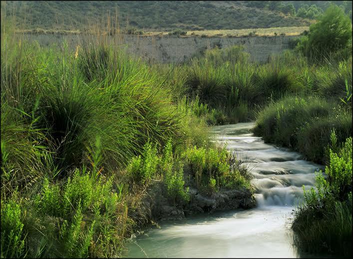 Ruta Interpretada al Cañón del Río Luchena con el Ayto. de Lorca.