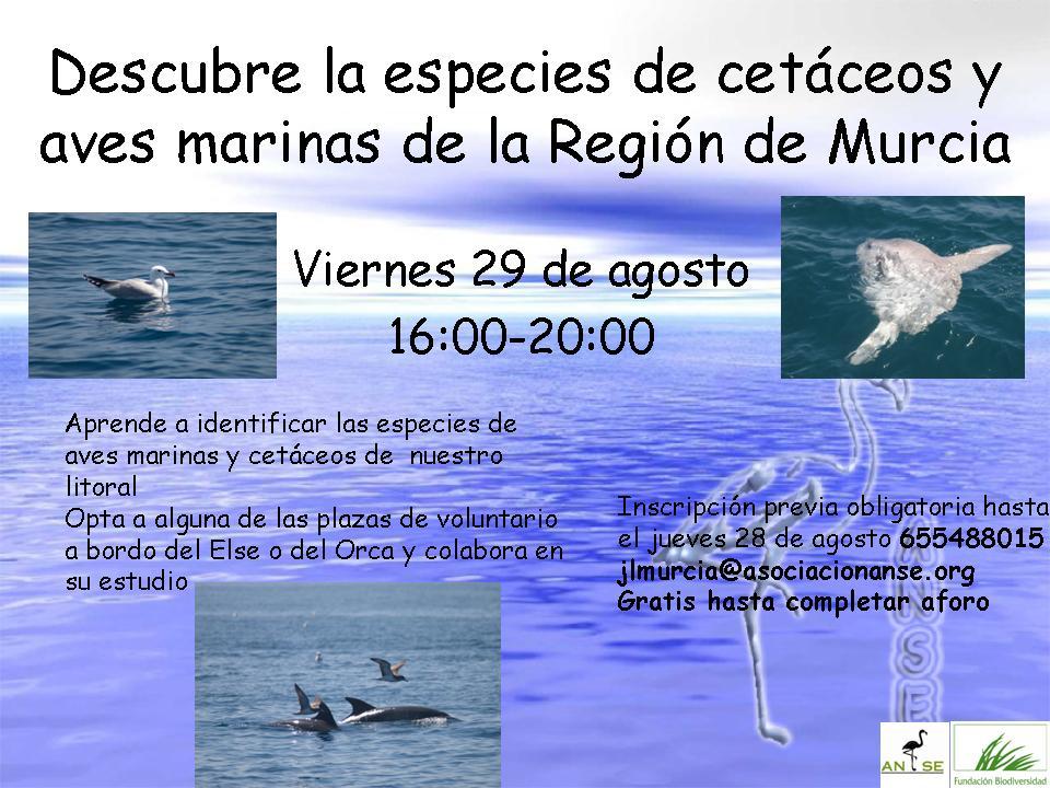 Cursillo de cetáceos y aves marinas con ANSE