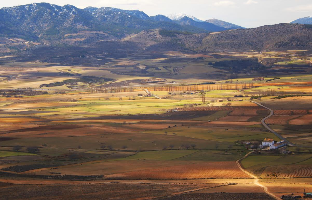 Ruta interpretada Carrascal de Bajil con el Ayto. de Lorca y Naturguiando.