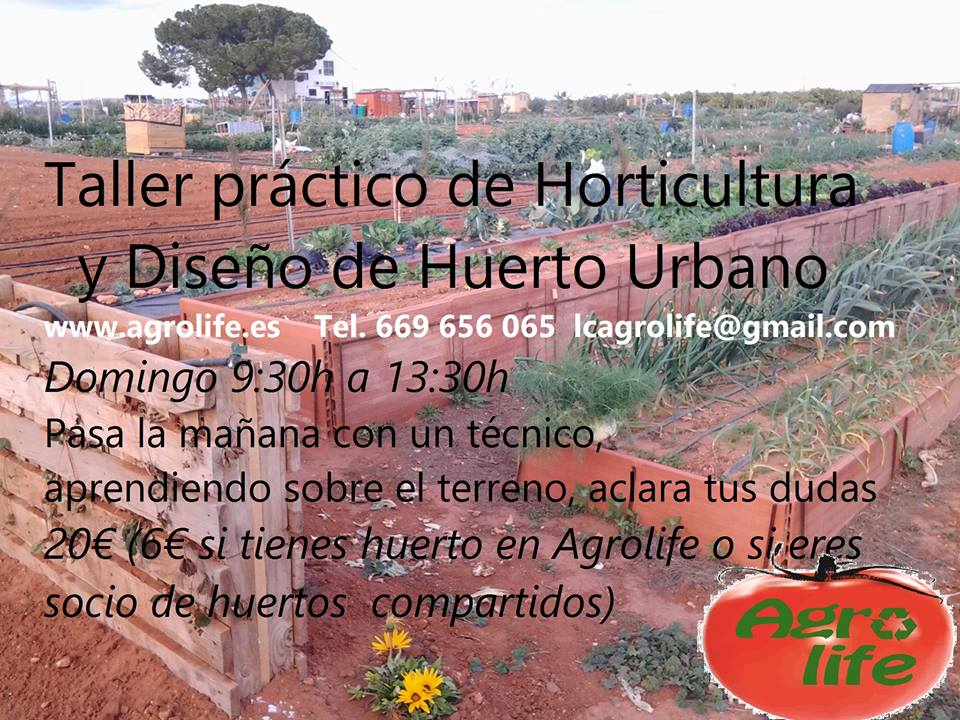 Taller práctico de Horticultura y Diseño de Huerto Urbano con Agrolife