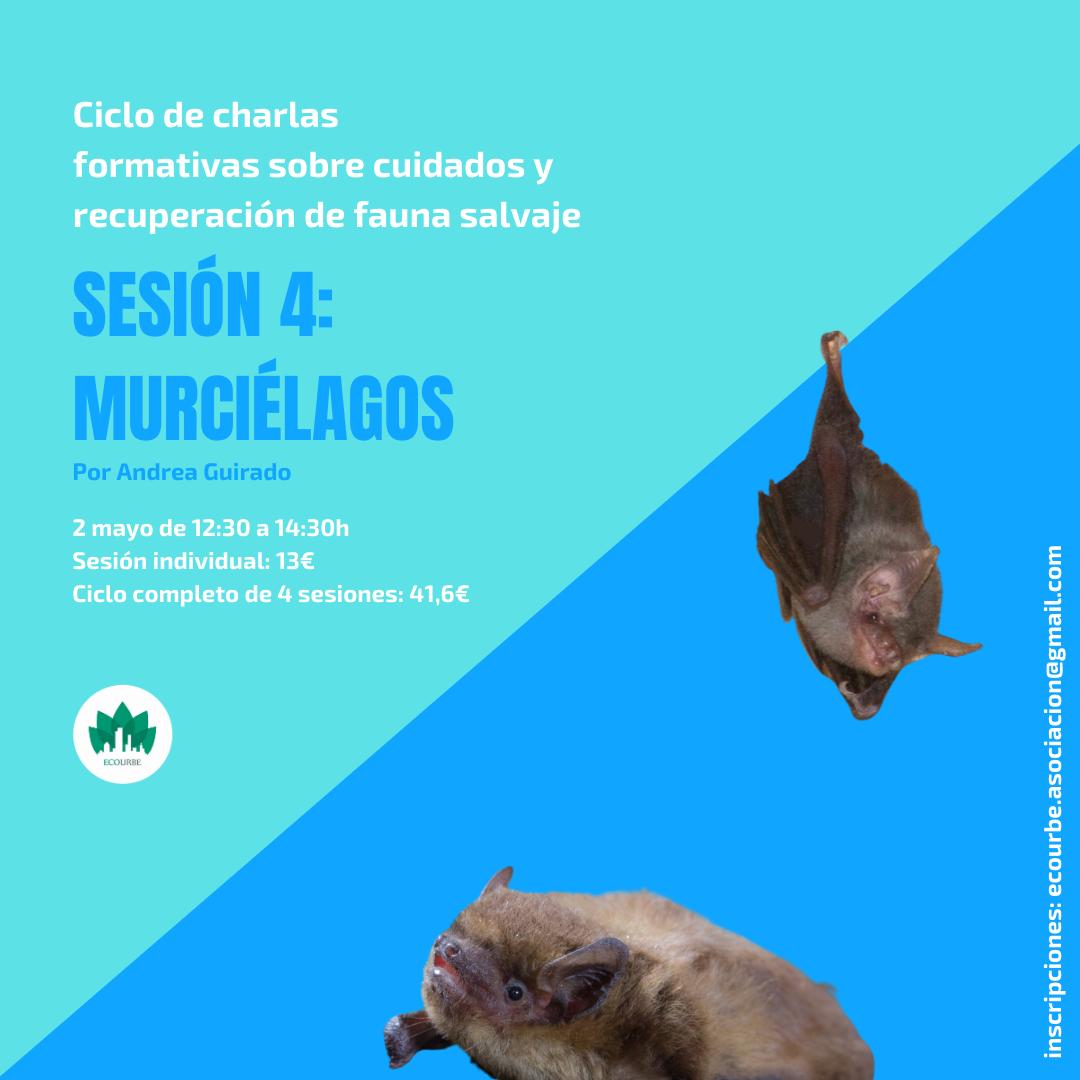 Charla sobre cuidados y recuperación de murciélagos, con Ecourbe