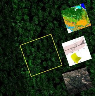 III Edición Curso QGis y LIDAR en la evaluación de ecosistemas forestales con Agresta.