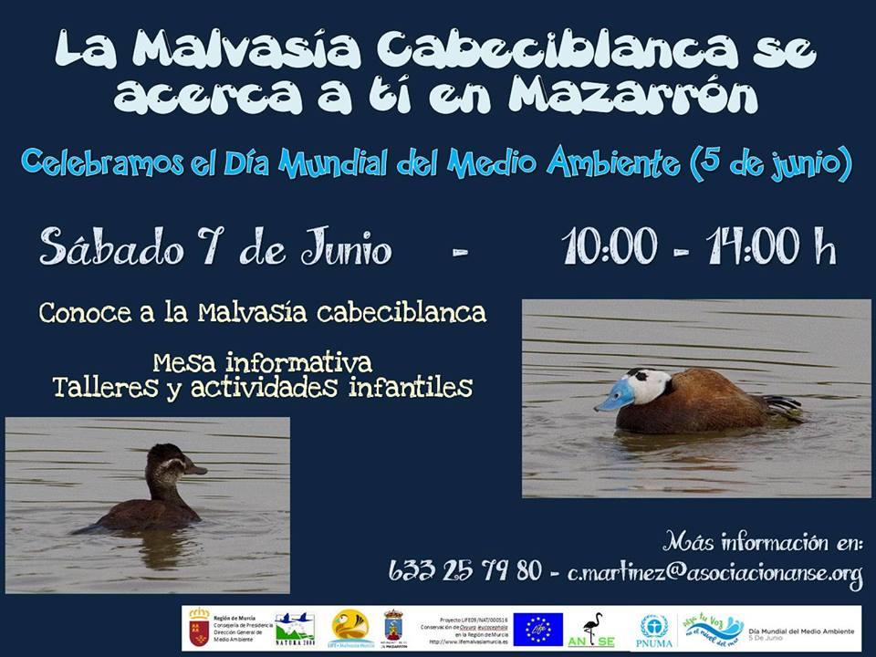 Día Mundial del Medio Ambiente con la malvasía