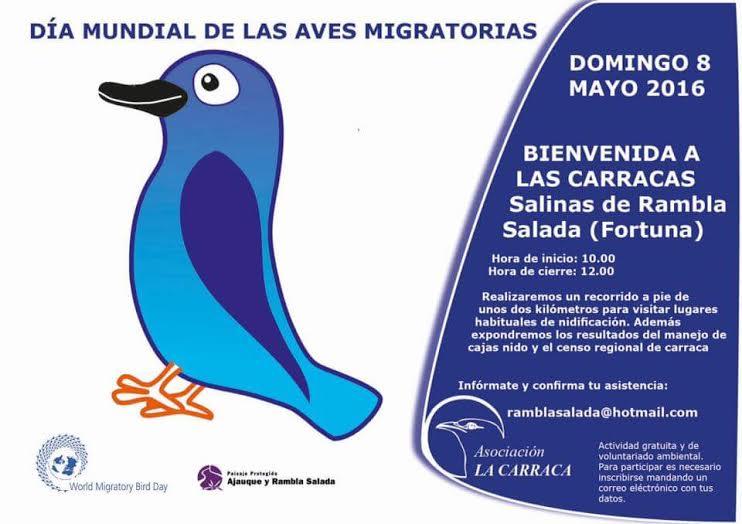 Voluntariado para el censo de Carracas y Bienvenida a las carracas