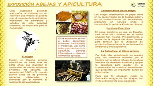 Exposición 'Abejas y apicultura' en el Ceneam