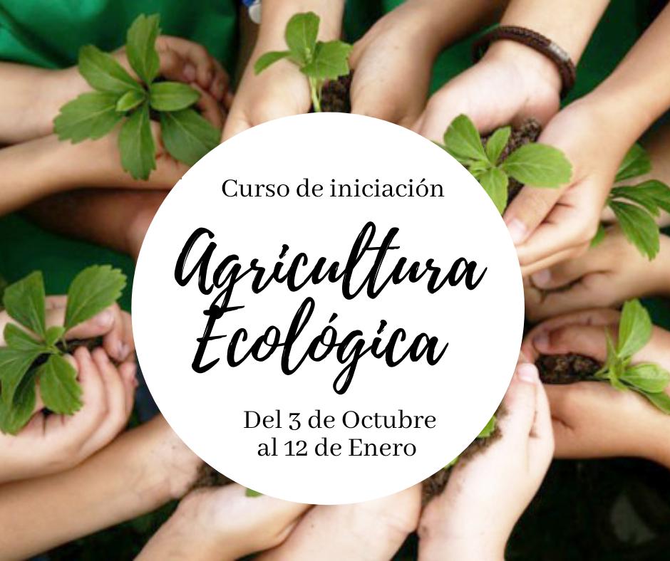 Curso de Iniciación de la Agricultura Ecológica, con la UMH