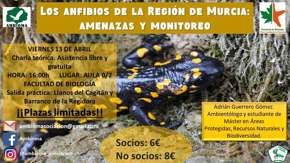 Los anfibios de la Región de Murcia: Amenazas y Monitoreo, con AMBIOMA