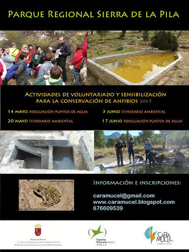 Programa de actividades para la conservación de anfibios en el PR Sierra de la Pila, con Caramucel