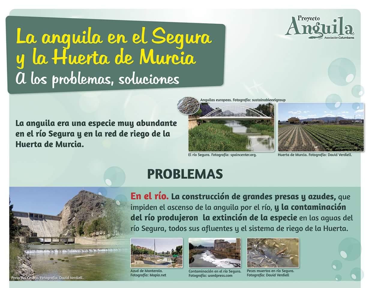 Otro panel de la exposición sobre el Proyecto Anguila