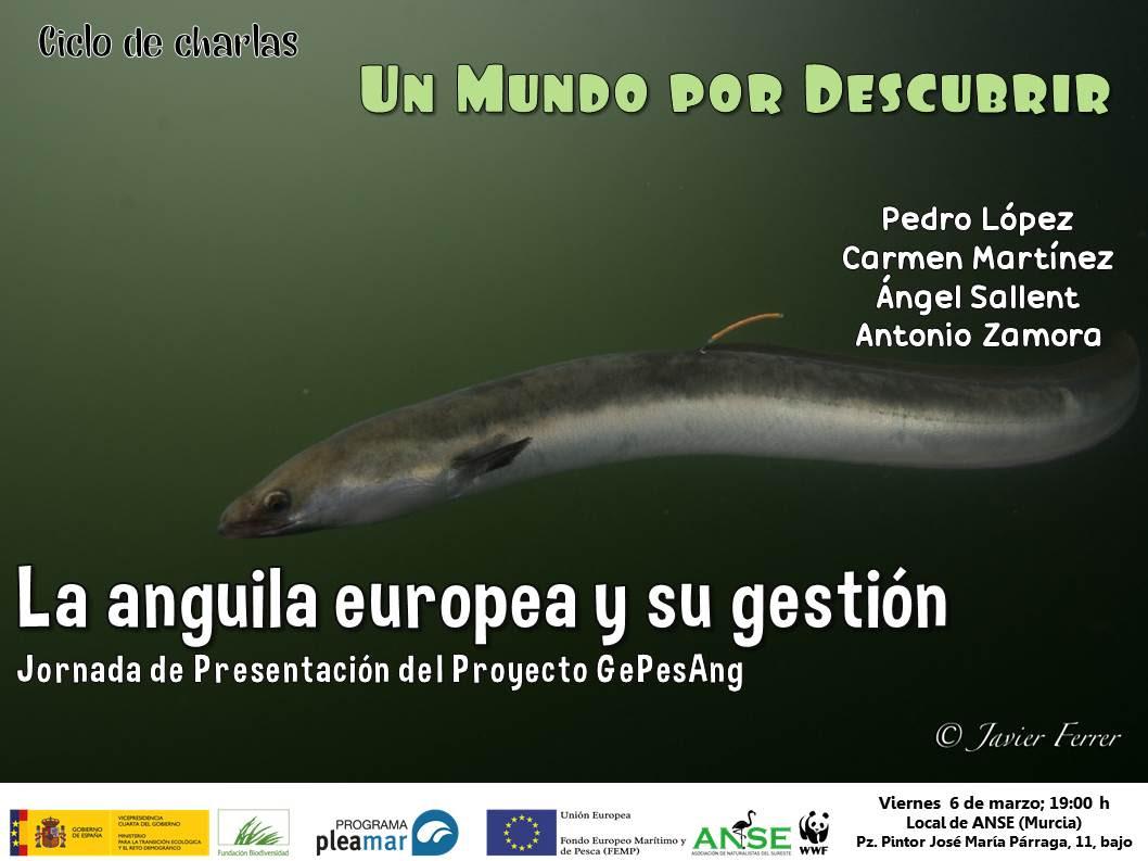 Charla sobre la anguila europea y su gestión, con ANSE