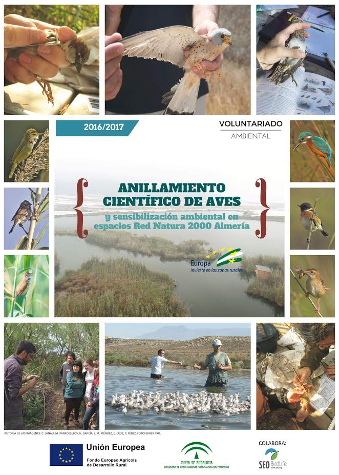 Anillamiento científico de aves, con la Estación de Anillamiento Lorenzo García