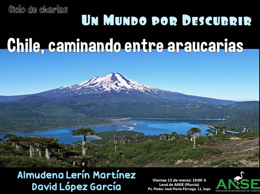 Chile, caminando entre araucarias, con ANSE