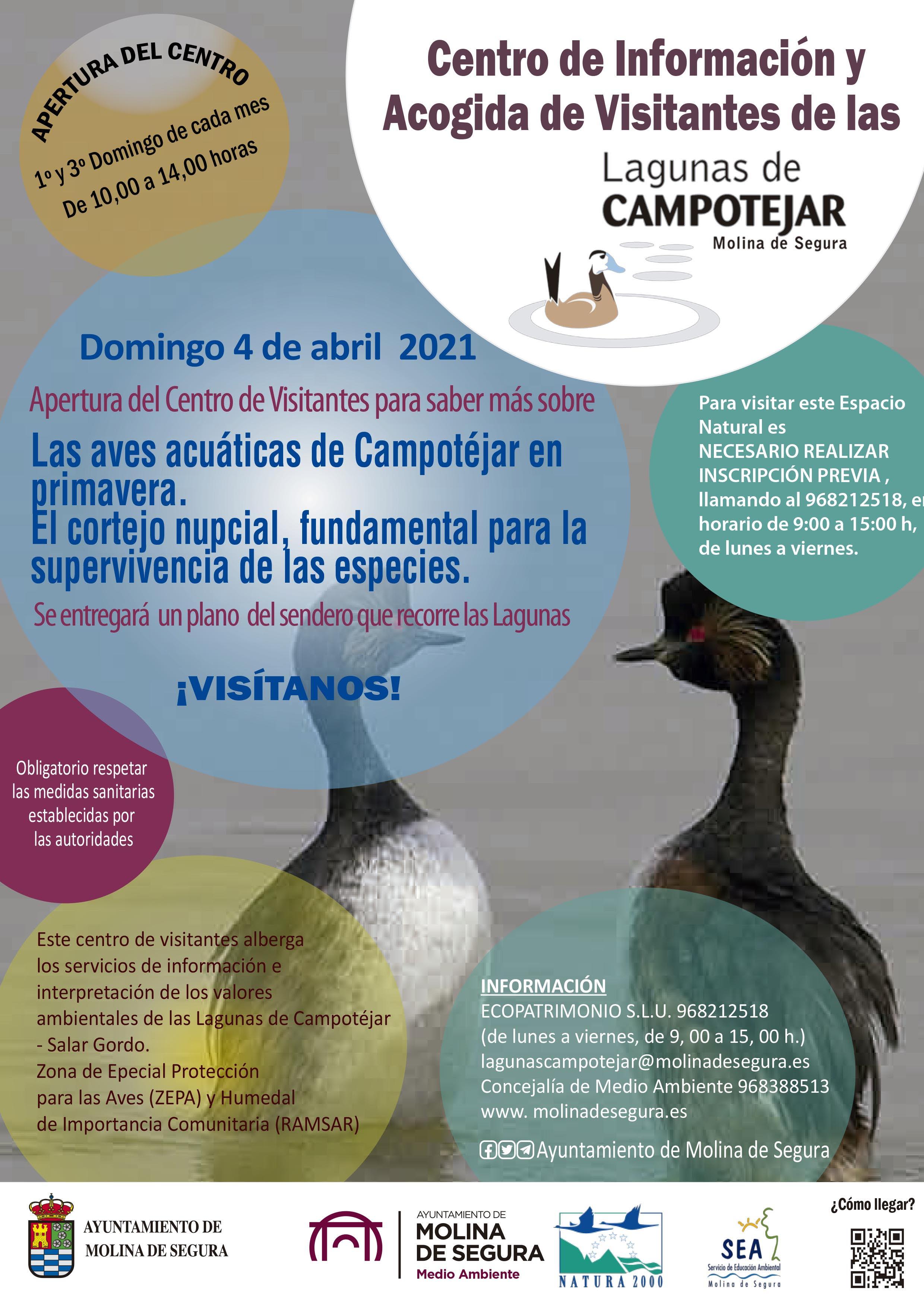 El cortejo de las aves acuáticas en Campotéjar