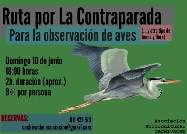 Observación de aves en La Contraparada, con Cachivache