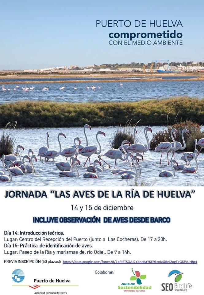 'Las aves de la Ría de Huelva', con SEO/BirdLife