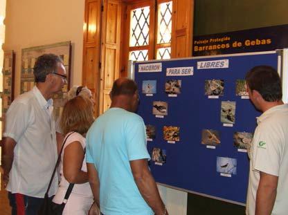 Exposición 'Aves urbanas' en el Centro de Visitantes y Gestión Ricardo Codorníu (PR Sierra Espuña)