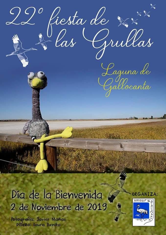 22 Fiesta de las grullas en Gallocanta, con Amigos de Gallocanta