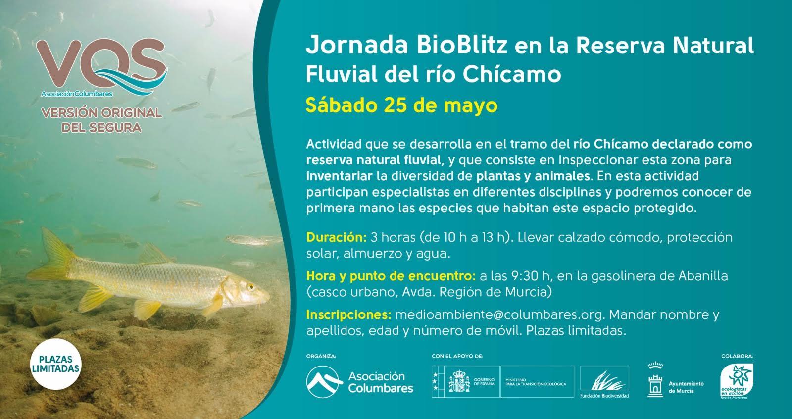 Jornada BioBlitz río Chícamo, con Columbares