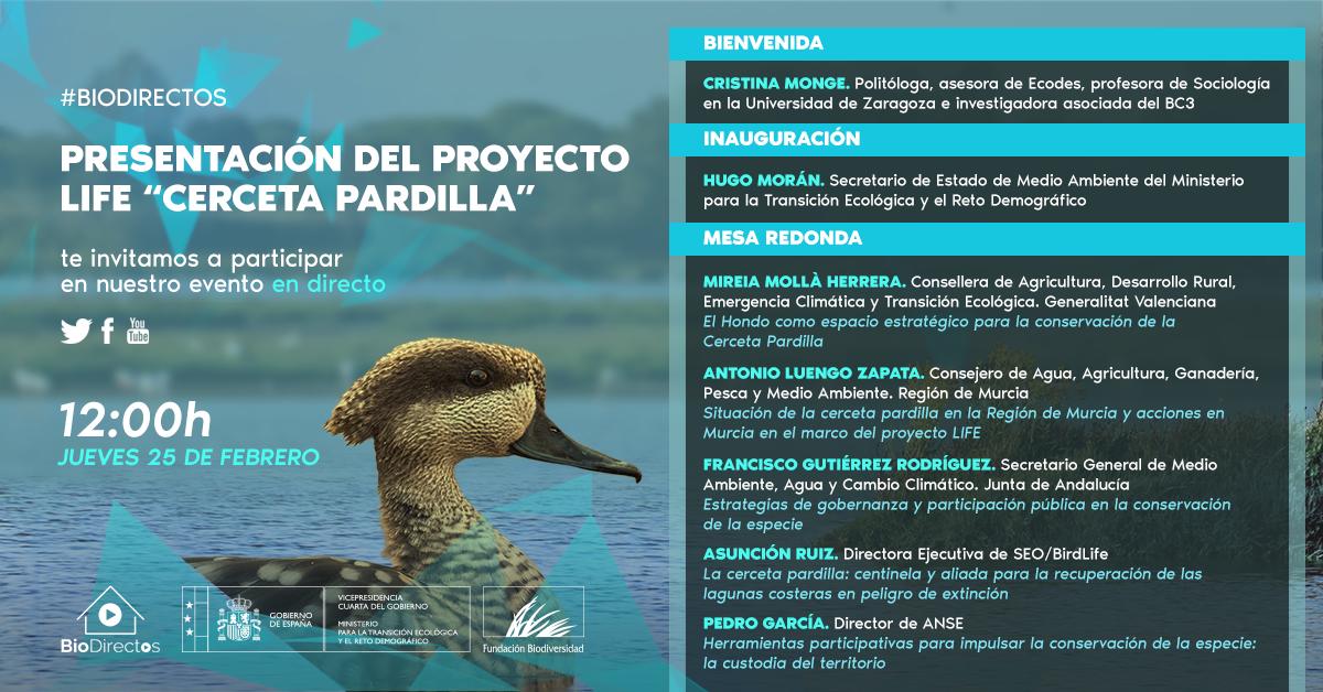 Charla online sobre la cerceta pardilla, con la Fundación Biodiversidad