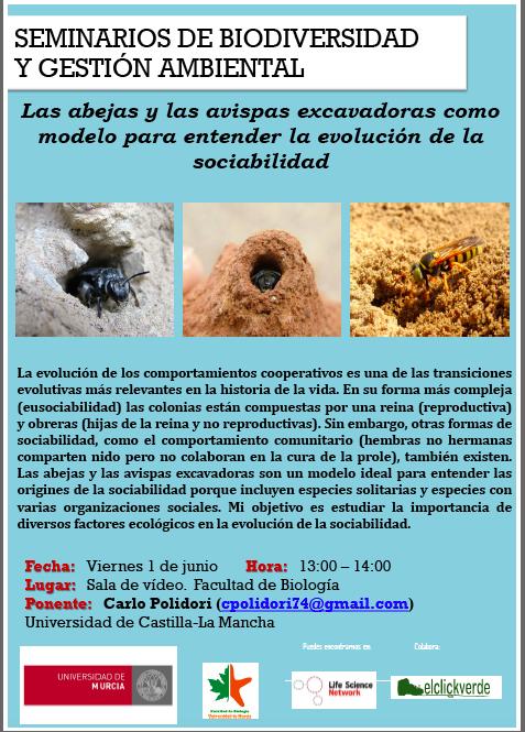 Charla sobre sociabilidad en insectos, con la UMU
