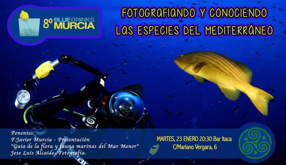 Charla sobre peces y fotografía, con Blue Drinks Murcia