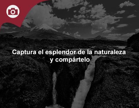 Concurso de fotos de naturaleza CaixaForum.