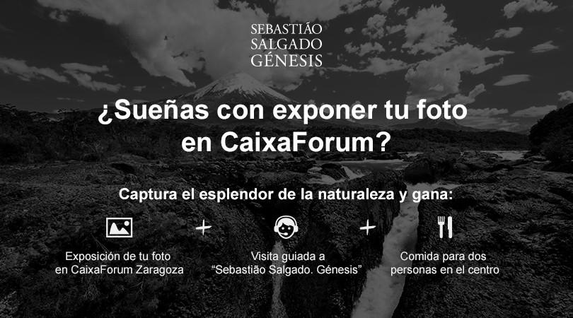 Concurso de fotos de naturaleza CaixaForum. Premios.