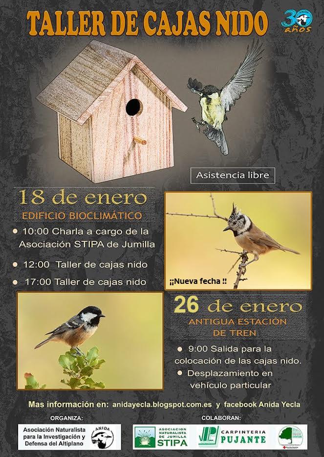 'Recuperación de aves insectívoras', con Anida Yecla