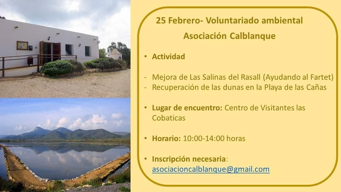 Mejora de las Salinas del Rasall, con la Asociación Calblanque