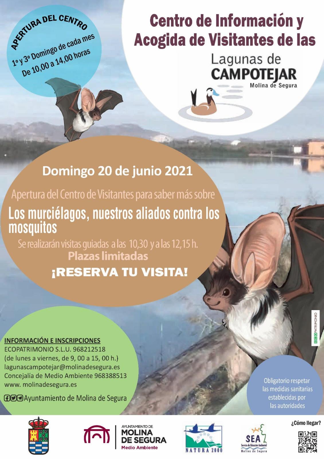 'Los murciélagos, nuestros aliados contra los mosquitos', con el Ayto. de Molina de Segura