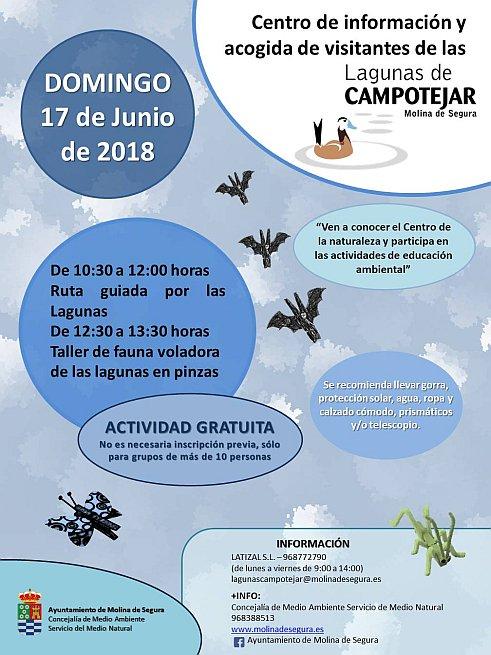 Ruta guiada y taller de fauna voladora, con el Ayto. de Molina de Segura