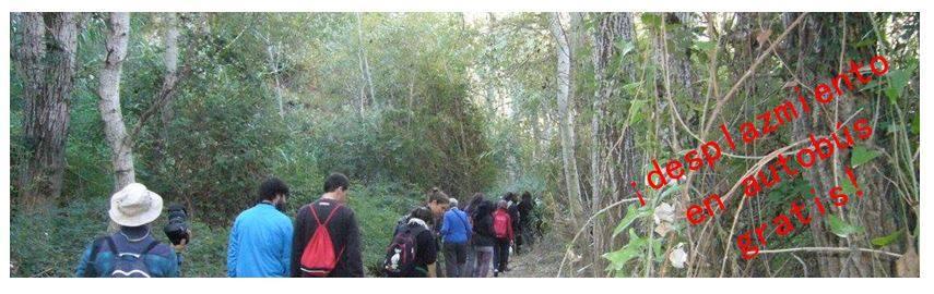 Visita el Bosque de Galería de Murcia: Senda de la Huertecica, con EPlan
